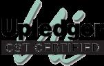 ui-cst-logo